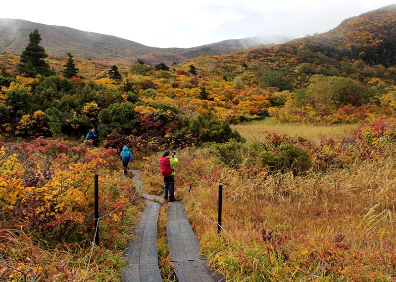 栗駒山 紅葉が進んだ名残ケ原。赤、黄、緑が織り成す美しさで「神の絨毯」と呼ばれています